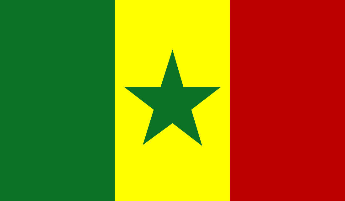 Anonymous-Flag-of-Senegal.png